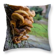 Mushroom Art Throw Pillow