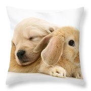 Rabbit And Puppy Throw Pillow