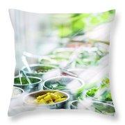 Salad Bar Buffet Fresh Mixed Vegetables Display Throw Pillow