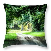 Scenes At Botany Bay Plantation Near Charleston South Carolina Throw Pillow
