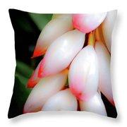 Shell Ginger Throw Pillow