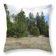 Show Low Landscape Throw Pillow