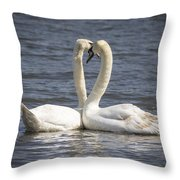 Swan -- Throw Pillow