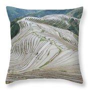 Terrace Fields Scenery In Spring Throw Pillow