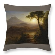 Tropical Scenery Throw Pillow