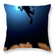 Underwater Photography Throw Pillow