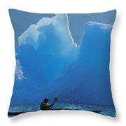 View Of Alaska Throw Pillow