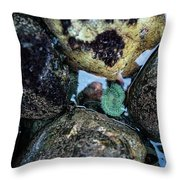 Wedding Rock At Patrick's Point State Park - California Throw Pillow