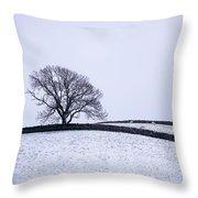Winter In Wensleydale Throw Pillow