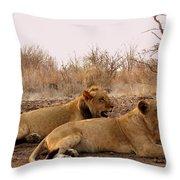 Zimbabwe Throw Pillow