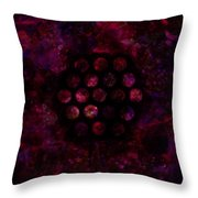 712 A Prophecy Throw Pillow