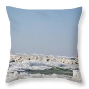 7201 Throw Pillow