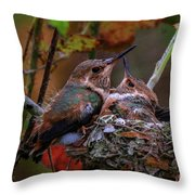 7389 All Feathered Out Throw Pillow