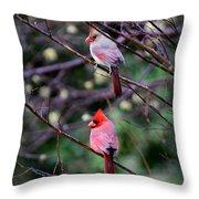 7440-008 Cardinal Throw Pillow
