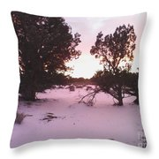 Snowy Desert Landscape Throw Pillow