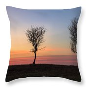 New Forest - England Throw Pillow