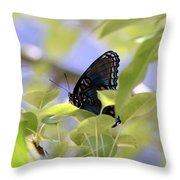 7759 - Butterfly Throw Pillow