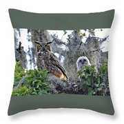 7765 Throw Pillow