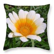 Australia - White Yellow Daisy Flower Throw Pillow