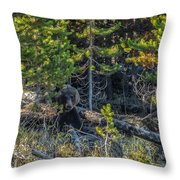 791 In The Forest Throw Pillow
