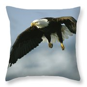 An American Bald Eagle In Flight Throw Pillow