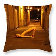 Anita De Bauch Throw Pillow