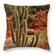 Anza-borrego Desert State Park Throw Pillow