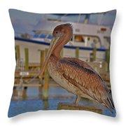8- Brown Pelican Throw Pillow