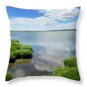 Cape Cod Salt Pond Throw Pillow