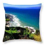 Cape Perpetua Throw Pillow