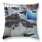 Centro De Investigaciones Paleontologicas Throw Pillow