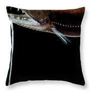 Deep Sea Dragonfish Throw Pillow