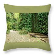 Fern Canyon Throw Pillow