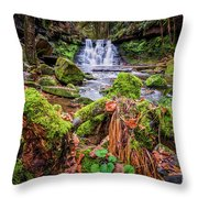 Goit Stock Waterfall Throw Pillow