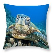 Hawaii, Green Sea Turtle Throw Pillow