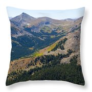 Autumn Tundra Turning To Gold  On Mount Yale Colorado Throw Pillow