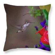 Hummingbird Found In Wild Nature On Sunny Day Throw Pillow