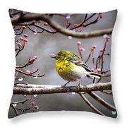 Img_0001 - Pine Warbler Throw Pillow