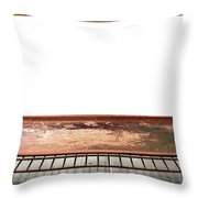 Inside The Oven Throw Pillow