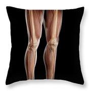 Leg Musculature Throw Pillow