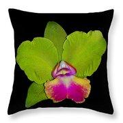 Orquid Throw Pillow