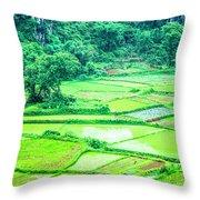 Rice Fields Scenery Throw Pillow