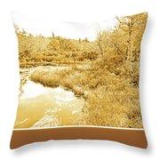 Stream In Autumn, Pocono Mountains, Pennsylvania Throw Pillow