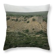 Texas Scenic Landscape Throw Pillow