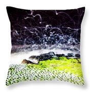 The Adobe Throw Pillow