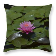 Water Lilies Throw Pillow