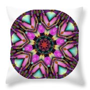 803-04-2015 Talisman Throw Pillow