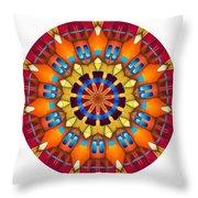 810-04-2015 Talisman Throw Pillow