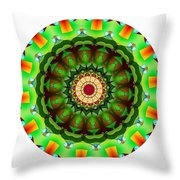 811-04-2015 Talisman Throw Pillow