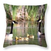 8132 - Canada Goose Throw Pillow
